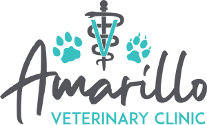 Experiencing An Emergency Amarillo Vet Clinic
