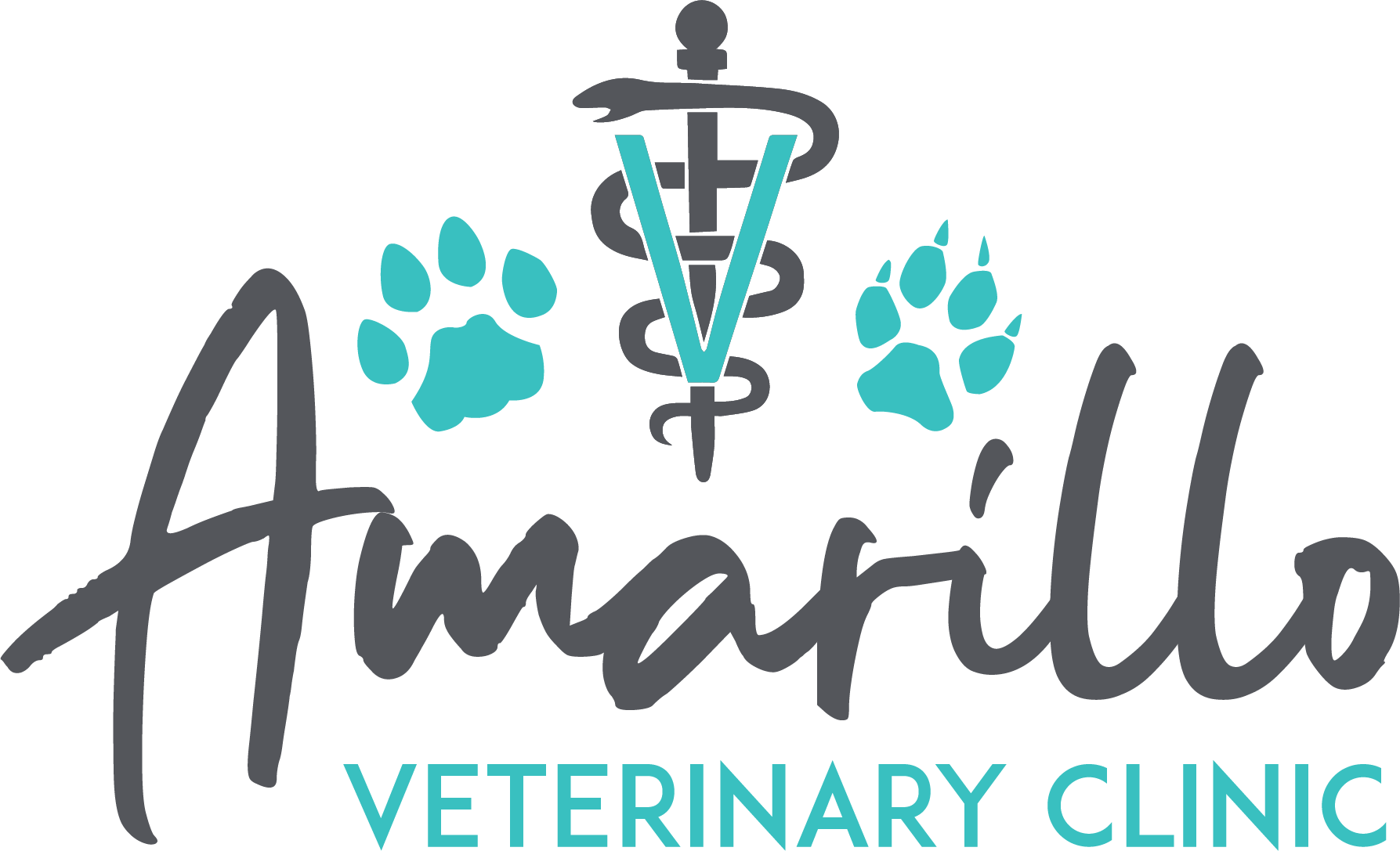 Microchipping Amarillo Vet Clinic